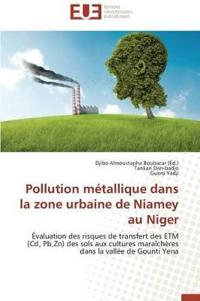 Pollution Metallique Dans La Zone Urbaine de Niamey Au Niger