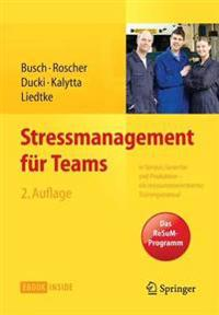 Stressmanagement F r Teams
