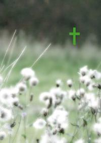 Raamattu (Vihreät niityt, pienoisraamattu, 96x142 mm, kaksi lukunauhaa)