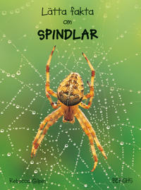 Lätta fakta om spindlar
