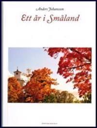 Ett år i Småland