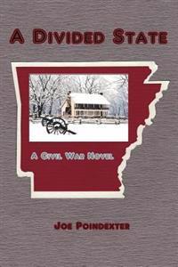 A Divided State: A Civil War Novel