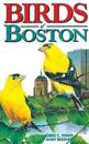Birds of Boston