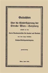 Gutachten Über Die Elektrifizierung Der Strecke Wien -salzburg