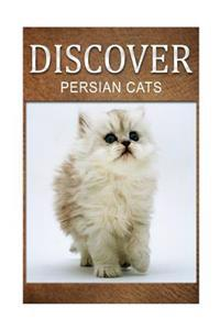 Persian Cats - Discover: Early Reader's Wildlife Photography Book