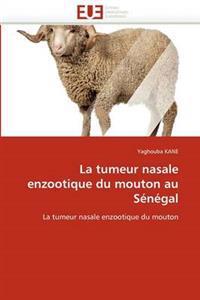 La Tumeur Nasale Enzootique Du Mouton Au Senegal