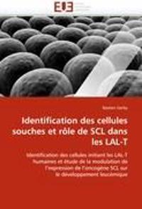 Identification Des Cellules Souches Et Rale de Scl Dans Les Lal-T