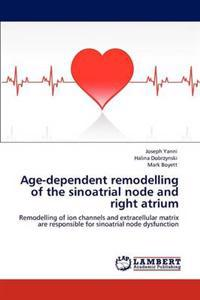 Age-Dependent Remodelling of the Sinoatrial Node and Right Atrium