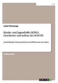 Kinder- Und Jugendhilfe (Kjhg). Geschichte Und Aufbau Des Sgb VIII