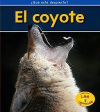 El Coyote = Coyotes