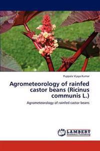Agrometeorology of Rainfed Castor Beans (Ricinus Communis L.)