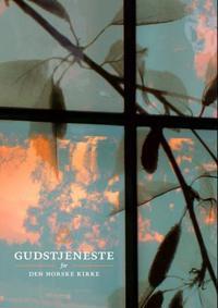 Gudstjeneste for Den norske kirke -  pdf epub
