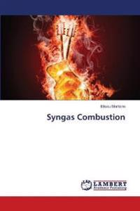Syngas Combustion
