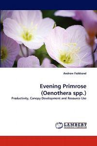 Evening Primrose (Oenothera Spp.)