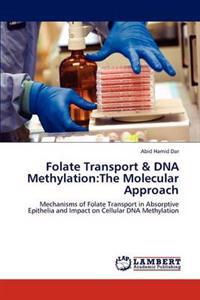 Folate Transport & DNA Methylation