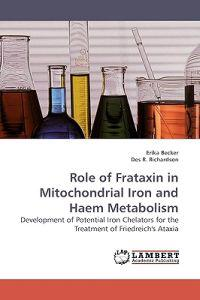 Role of Frataxin in Mitochondrial Iron and Haem Metabolism
