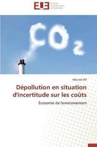 Depollution En Situation D'Incertitude Sur Les Couts