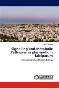 Signalling and Metabolic Pathways in Plasmodium Falciparum