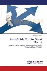 Ants Guide You to Good Route