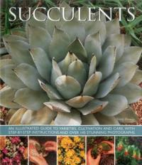 Succulents: An Illustrated Guide to Varieties, Cultivation and Care, with Step-By-Step Instructions and Over 145 Stunning Photogra