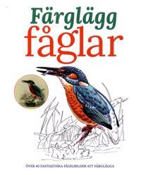Färglägg fåglar : över 40 fantastiska fågelbilder att färglägga