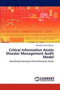 Critical Information Assets Disaster Management Audit Model