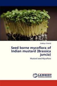 Seed Borne Mycoflora of Indian Mustard (Brassica Juncia)