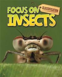 Classification  Focus on  Insects - Stephen Savage - böcker (9780750284882)     Bokhandel