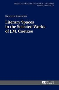 Literary Spaces in the Selected Works of J. M. Coetzee