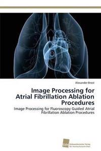 Image Processing for Atrial Fibrillation Ablation Procedures