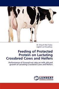 Feeding of Protected Protein on Lactating Crossbred Cows and Heifers