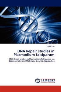 DNA Repair Studies in Plasmodium Falciparum