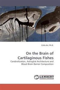 On the Brain of Cartilaginous Fishes