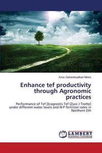 Enhance Tef Productivity Through Agronomic Practices