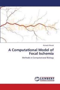 A Computational Model of Focal Ischemia