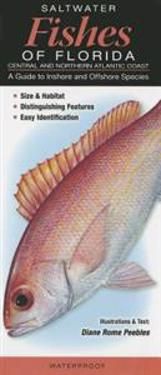 Saltwater Fishes of Florida-Central & Northern Atlantic Coast: A Guide to Inshore & Offshore Species