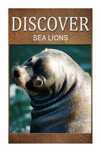 Sea Lion - Discover: Early Reader's Wildlife Photography Book
