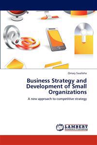 Business Strategy and Development of Small Organizations