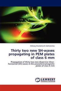 Thirty Two New Sh-Waves Propagating in Pem Plates of Class 6 MM