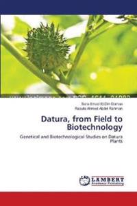 Datura, from Field to Biotechnology