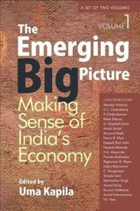 The Emerging Big Picture