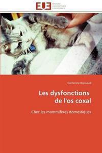 Les Dysfonctions de L'Os Coxal