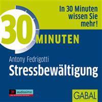 30 Minuten für erfolgreiche Stressbewältigung / CD
