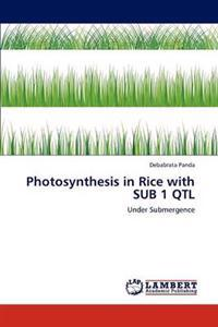 Photosynthesis in Rice with Sub 1 Qtl