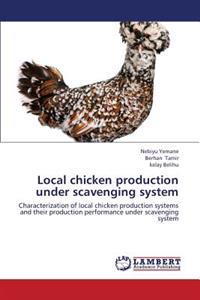Local Chicken Production Under Scavenging System