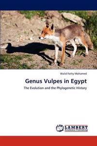 Genus Vulpes in Egypt