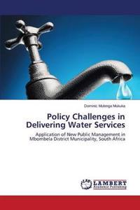Policy Challenges in Delivering Water Services