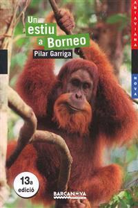 Un Estiu a Borneo / A Summer in Borneo