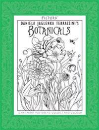 Pictura Prints: Botanicals