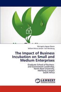 The Impact of Business Incubation on Small and Medium Enterprises